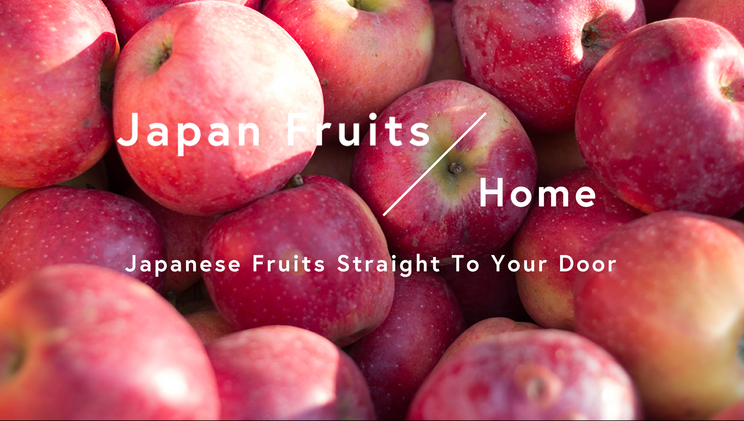 Japanese Fruits Straight To Your Door - Japanese Fruits Straight To Your Door
